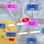 ドラマ【ボイス110緊急指令室】6話あらすじ!真の黒幕関係図